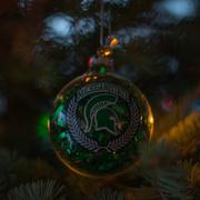 16th Dec 2016 - MSU Spartan Fans