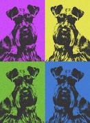 17th Dec 2016 - Pop Art Dog