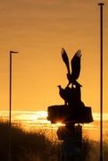 17th Dec 2016 - Osprey Silhouette