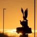 Osprey Silhouette  by rjb71