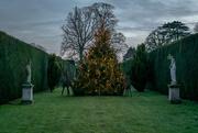 18th Dec 2016 - Uffington park