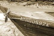 15th Dec 2016 - Mangrove wood boat