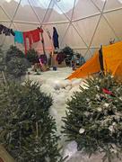 21st Dec 2016 - LLbean Winter Camping exhibit