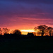 2016 12 23 - Shepherds warning!! by pamknowler