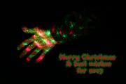 21st Dec 2016 - Merry Christmas!