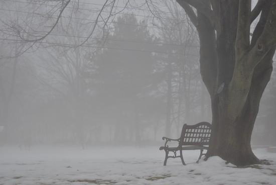 Fog by vera365