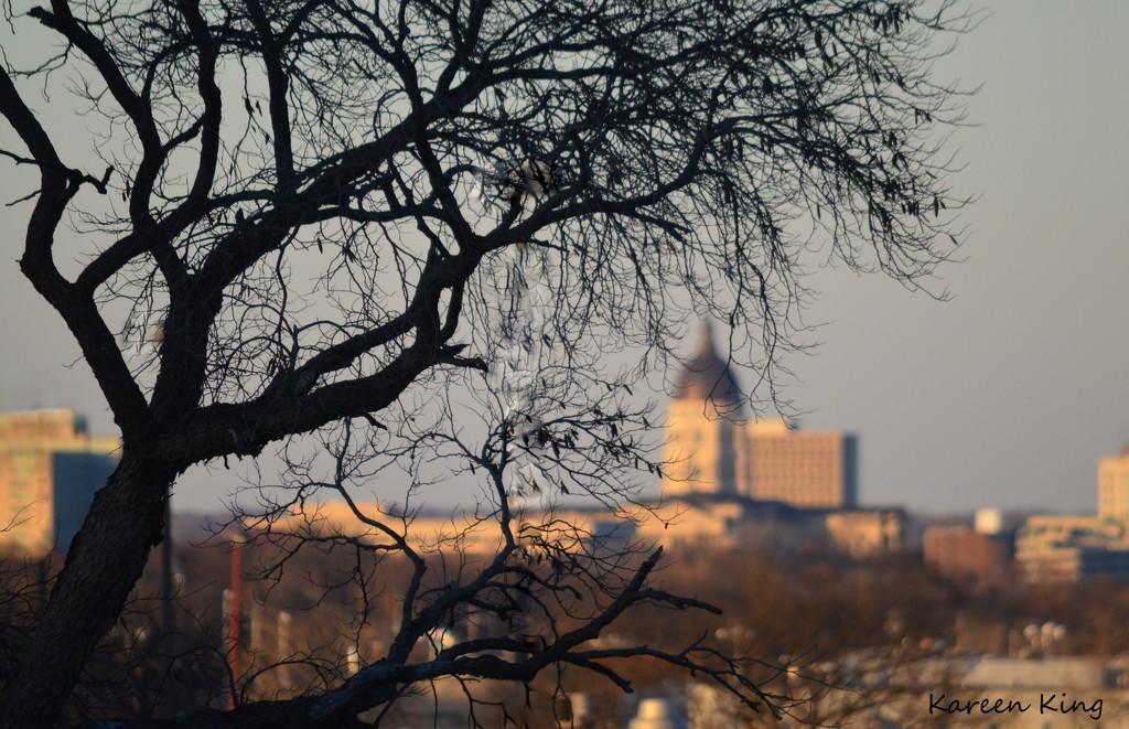 Capital Building - Topeka, KS by kareenking