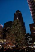 24th Dec 2016 - Famous Xmas Tree