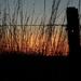 For Kareen - Flint Hills Kansas Sunset by mcsiegle