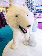 22nd Dec 2016 - Polar bear