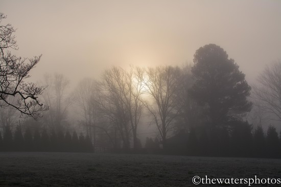Sunrise in the fog by thewatersphotos