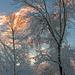 Snowy by dianen