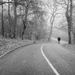 Lone walker by rjb71