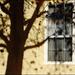 shadowed window