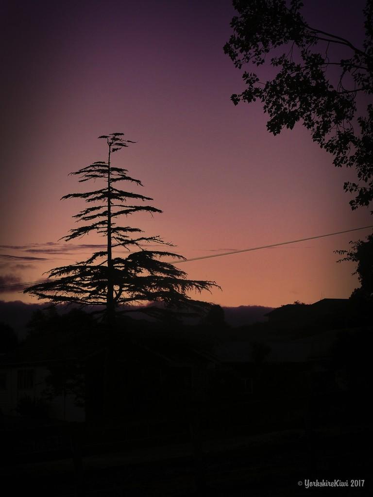 sunset by yorkshirekiwi