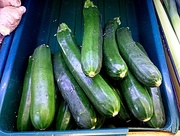 28th Dec 2016 - Z is for zucchini