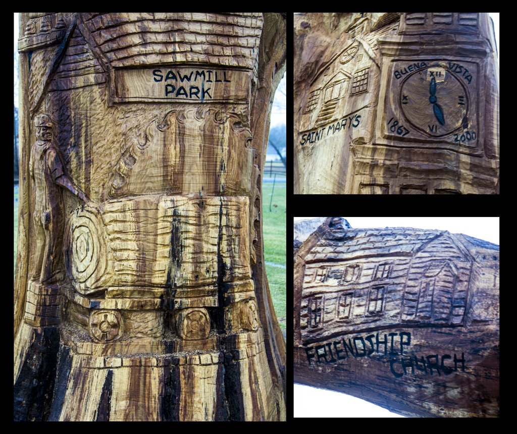 Tree Carvings by hjbenson