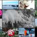 Top 12 I liked most by bruni