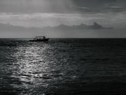 4th Jan 2017 - morning boat