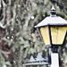 A blurry snow flurry  by vera365
