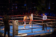 12th Nov 2016 - Day 319, Year 4 - Ringside In Monte Carlo