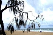 6th Jan 2017 - Mudjimba  Beach