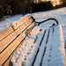 A Chilly Bench by bill_fe