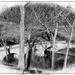 Burnside Bridge Antietam