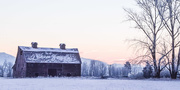 8th Jan 2017 - Blasdel Barn at Sunrise