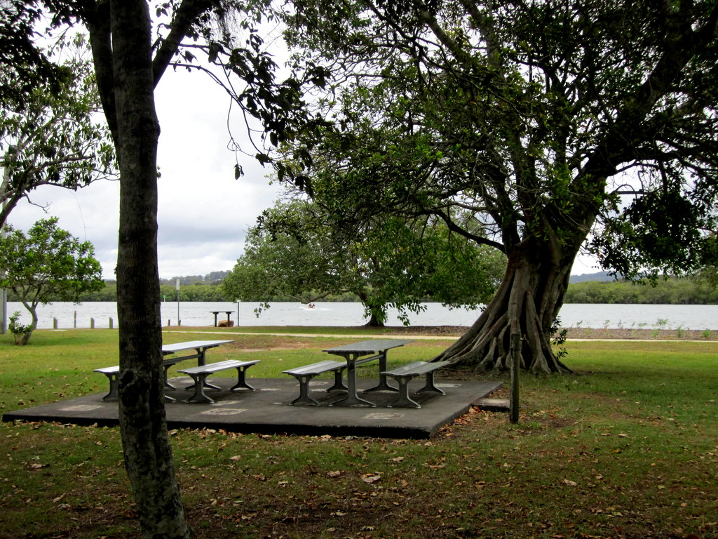 Picnic area along Maroochy River.   Bli Bli  Queensland by 777margo