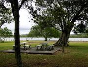 9th Jan 2017 - Picnic area along Maroochy River.   Bli Bli  Queensland