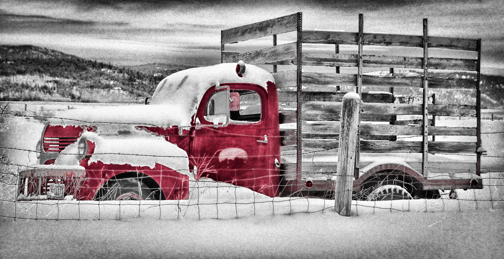Deserted Farm Truck in Snowfield  by 365karly1