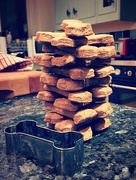 9th Jan 2017 - Dog biscuit Jenga