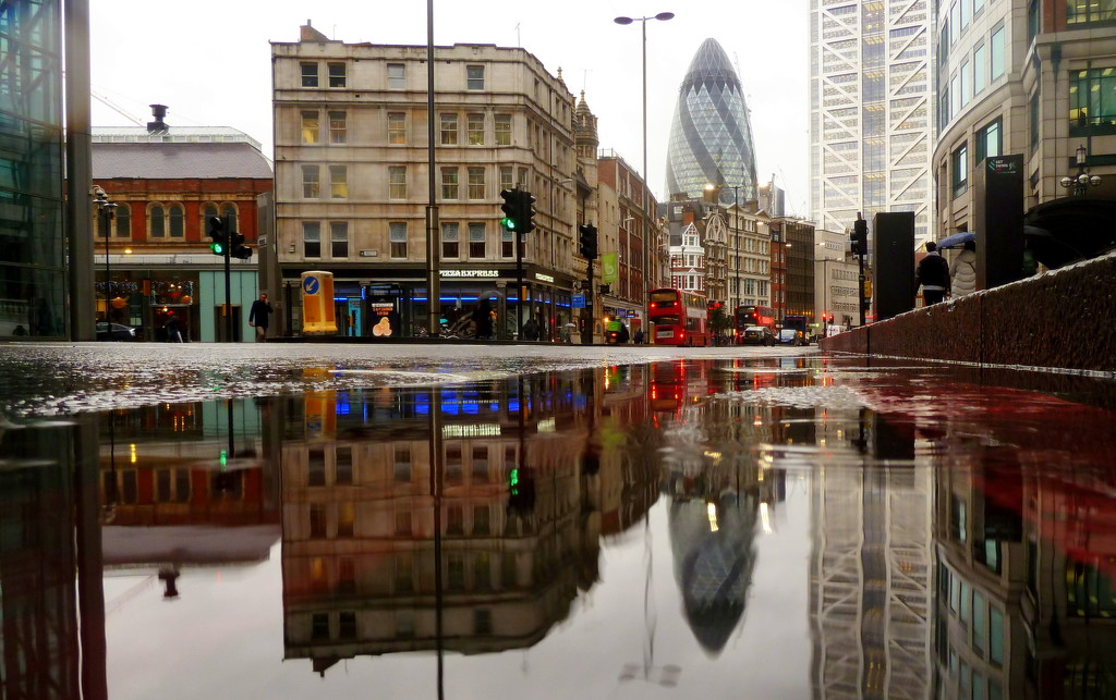 Gherkin reflected by boxplayer