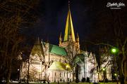10th Jan 2017 - Nidaros Cathedral by night