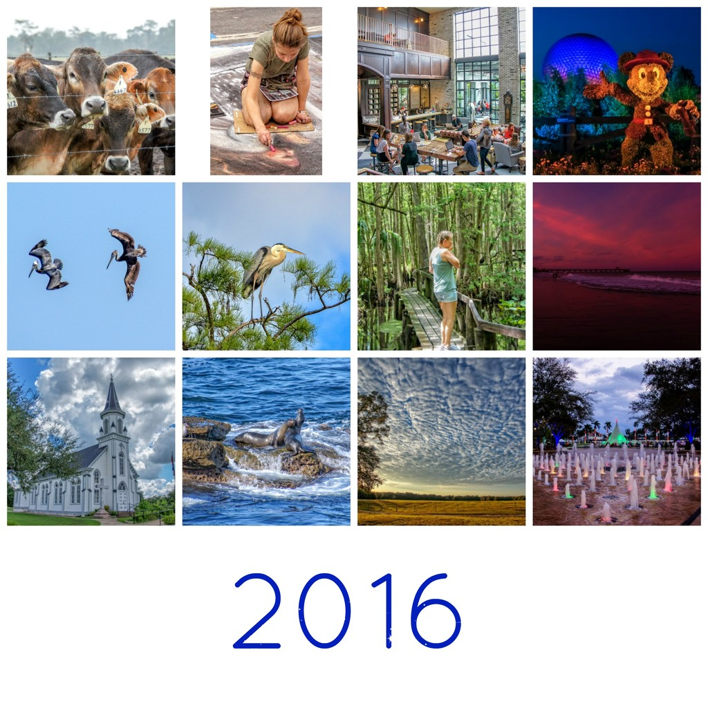 2016 collage by danette