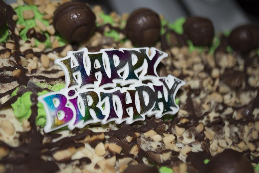 happy 11th birthday missy by winshez
