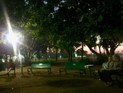 11th Jan 2017 - Evening at the park.