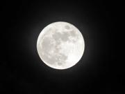 12th Jan 2017 - Full Moon