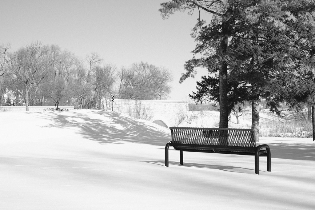 Bench by tosee