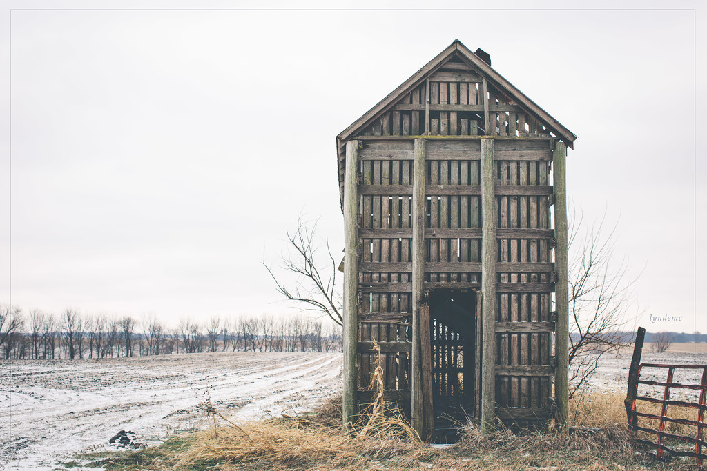 Corn Crib in the Cold by lyndemc