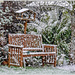 It's Snowing!! (best viewed on black)