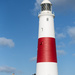 Portland Lighthouse by dorsethelen