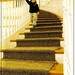 Micah and the Big Staircase by olivetreeann