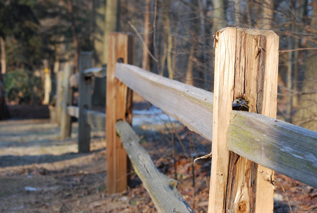 fence-line by stillmoments33