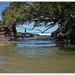Waipu Cove ..