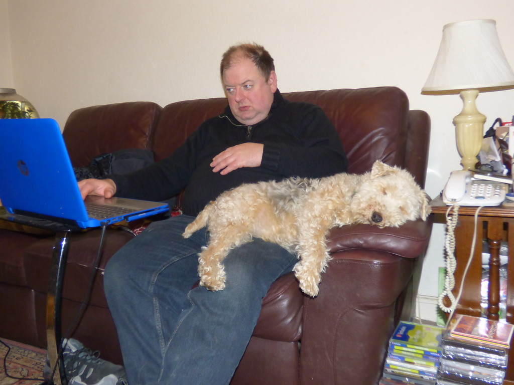 Let Sleeping Dogs Lie  by beryl