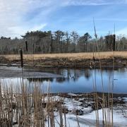 17th Jan 2017 - North River