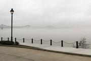 29th Dec 2016 - Still misty
