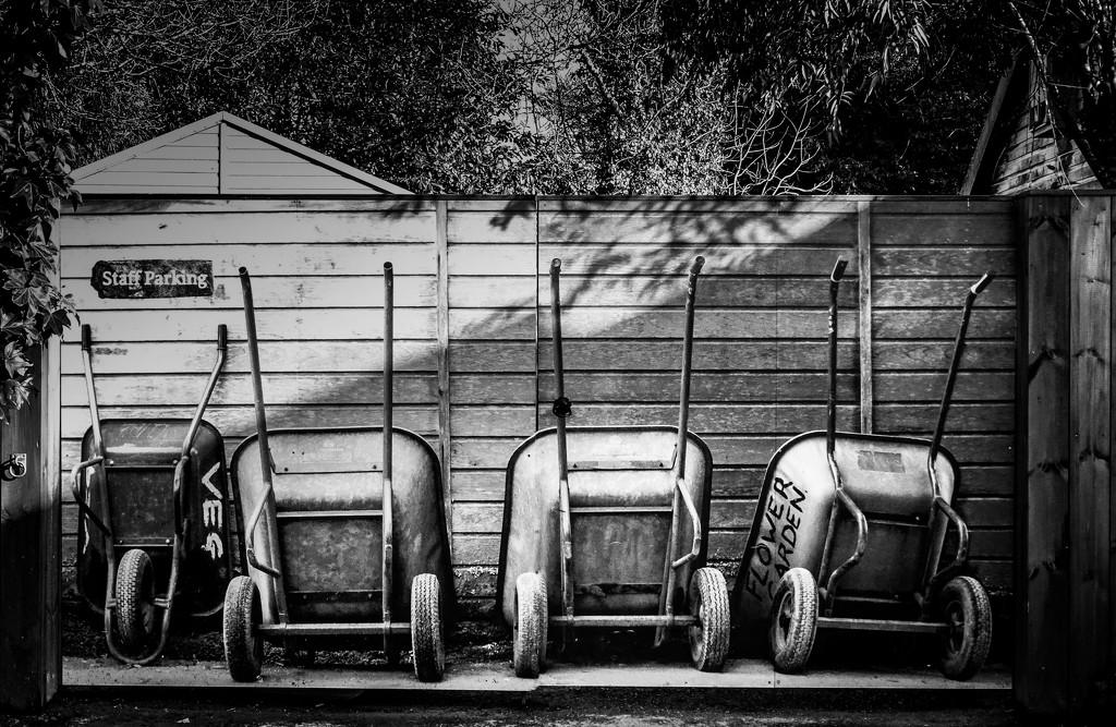 Staff parking  by swillinbillyflynn